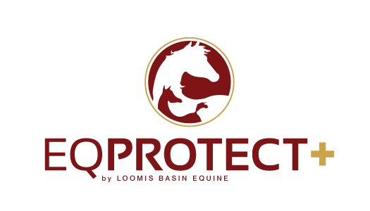 EQ Protect Plus logo